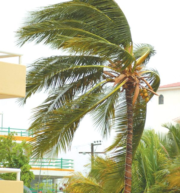 Being hurricane ready with your HVAC and property