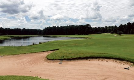 Brown Golf offers variety, options on public golf courses