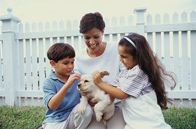 Dogs, volunteering help make life fulfilling