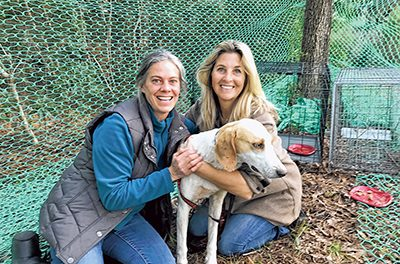 Group's efforts tranform stray into 'Lucky' dog