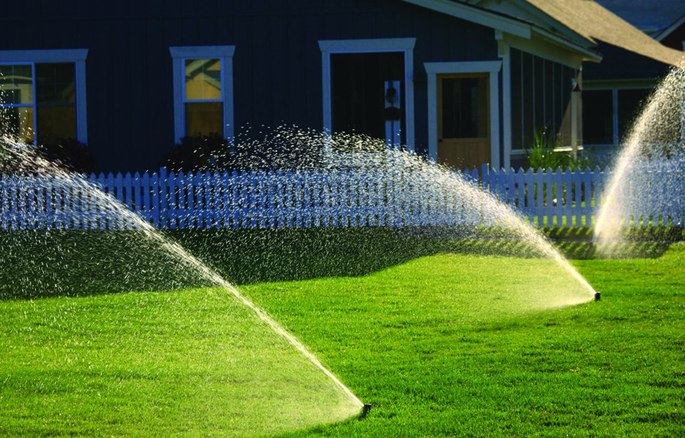 Keep watering, but it's almost time to stop fertilizing