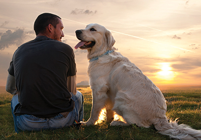 How to retrain a dog who thinks he owns you