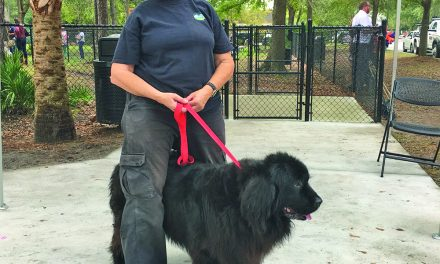 Etiquette, tips for visiting newly opened Bluffton Dog Park