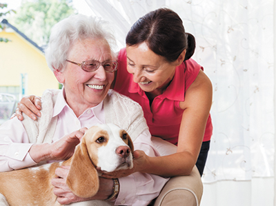 Importance of welcoming pets into community living