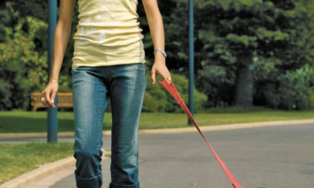 Walking the dog is more than just a stroll around the block