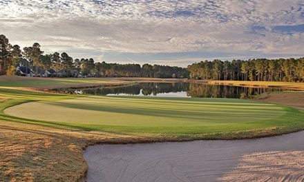 Pinecrest offers fantastic finish with picturesque No. 18